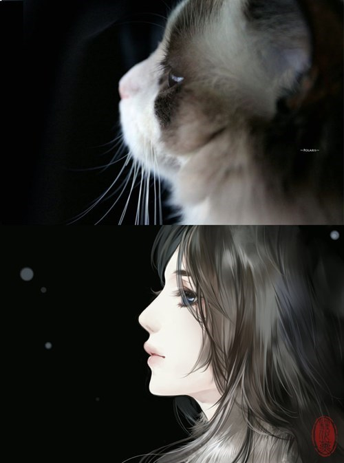 Whiskers - -PouA