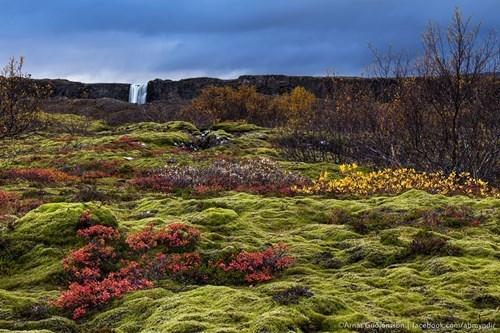 Natural landscape - OAmrG one Hacebookcom/abeodic