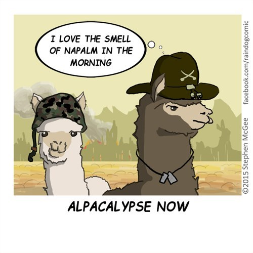 funny-web-comics-from-the-director-of-babe-pig-in-the-city