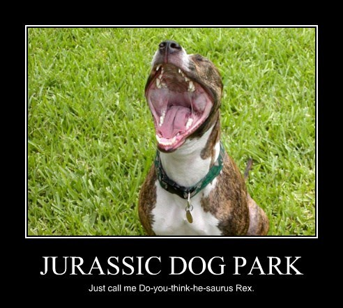 JURASSIC DOG PARK Just call me Do-you-think-he-saurus Rex.