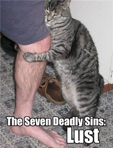 The Seven Deadly Sins: Lust