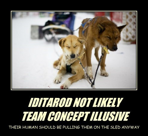 IDITAROD NOT LIKELY TEAM CONCEPT ILLUSIVE THEIR HUMAN SHOULD BE PULLING THEM ON THE SLED ANYWAY