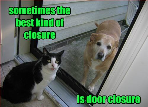 Cat - sometimes the best kind of closure is door closure