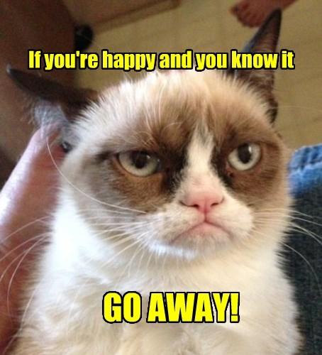 Grumpy Cat captions Cats funny - 8506269952