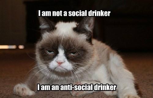 drinking,Grumpy Cat