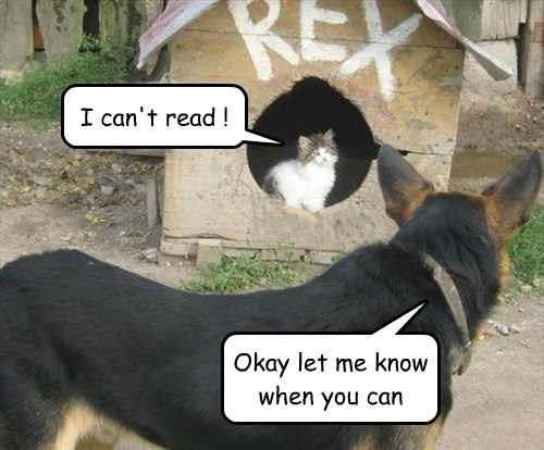 dogs read Cats - 8506426880