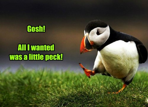 Puffin - Gosh! All Iwanted was a little peck!