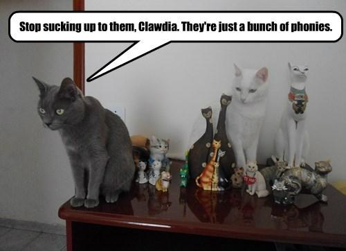captions Cats funny - 8507142144