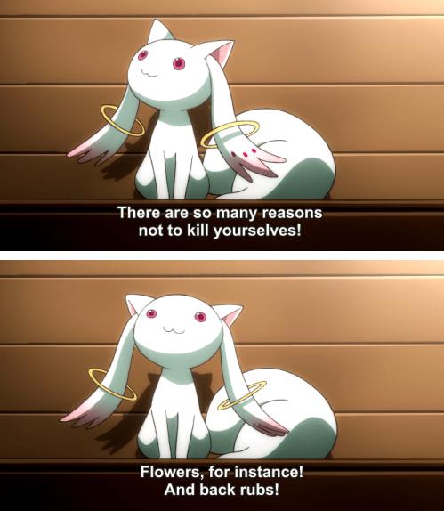 anime memes reason to live