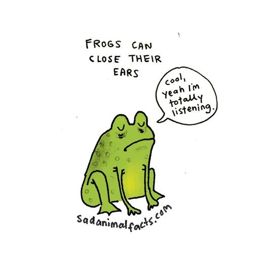 Cartoon - FROGS CAN C LOSE THEIR EARS cool, yeah Im totally listening. Sadanimalocts.com