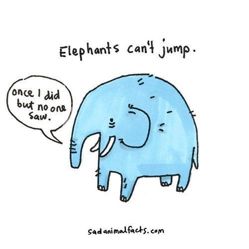 Elephant - Elephants cant jump once I did but no on Saw. sadanimalfacts.com