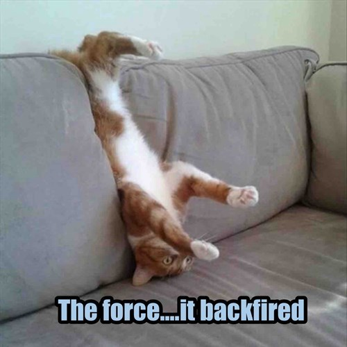 Cat - The force..it backfired