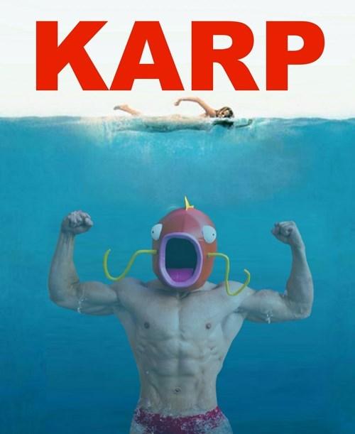 Album cover - KARP