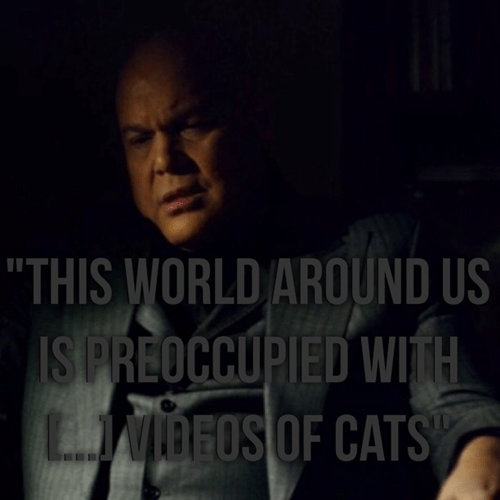 superheroes-daredevil-marvel-kingpin-cat-video-memes