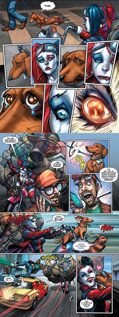 Straight off the Page Harley Quinn animal lover - 8508492800