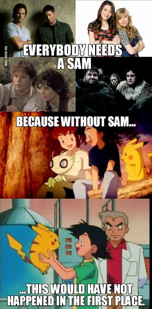 Sam professor oak - 8508929280