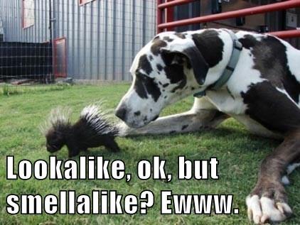 Lookalike, ok, but smellalike? Ewww.