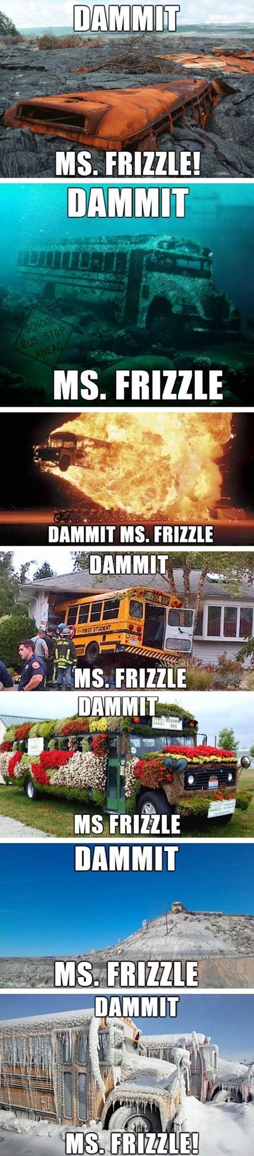 cartoon memes dammit ms frizzle