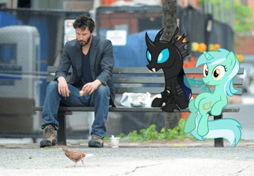 lyra,sits,changeling,meme,sad keanu