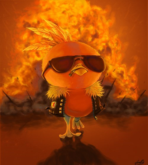 pokemon memes cool torchic fan art