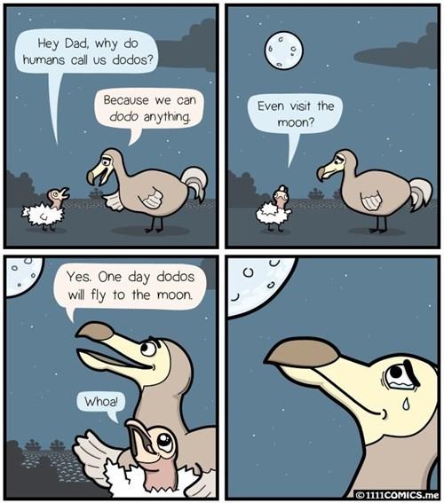 funny-web-comics-the-dodos-didnt-go-extinct