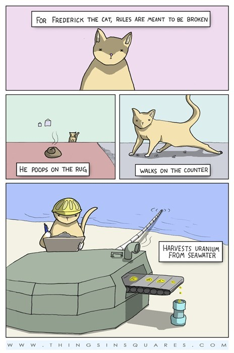 funny-web-comics-some-cats-never-follow-the-rules