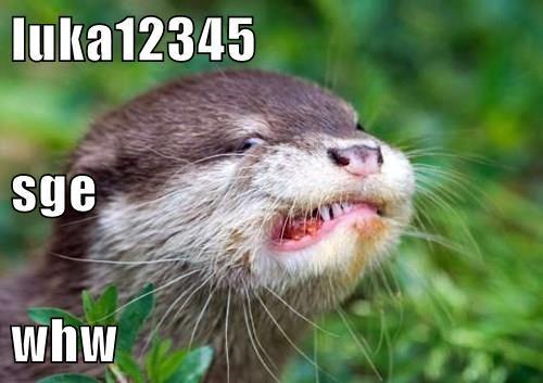animals - 8512715008