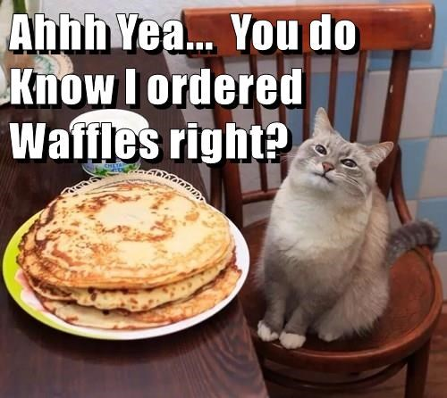 Ahhh Yea...  You do Know I ordered Waffles right?