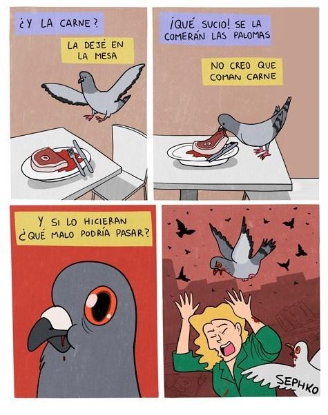 cuidado con las palomas