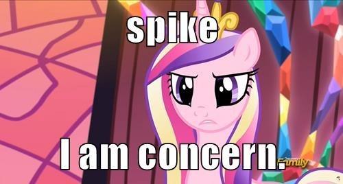princess cadence,spike is worst pony,parenting