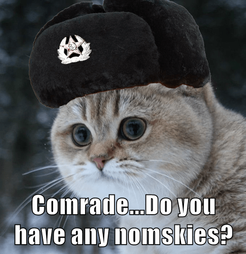 Comrade...Do you have any nomskies?