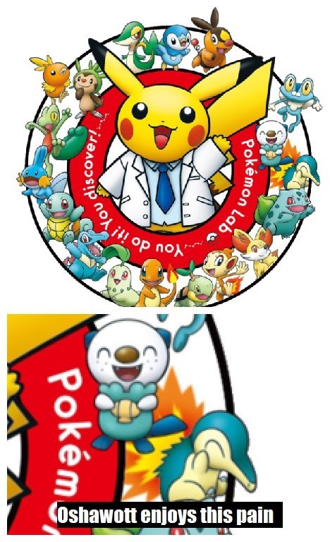 that looks naughty oshawott burn - 8516785152