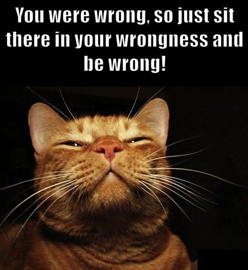 You were wrong, so just sit there in your wrongness and be wrong!