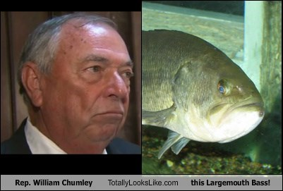 Rep. William Chumley Totally Looks Like this Largemouth Bass!