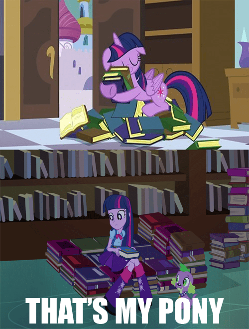equestria girls twilight sparkle books that's my pony - 8518951680