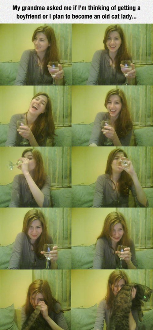 cat lady, wine, lonely, dating
