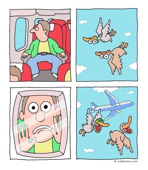 broma aerea