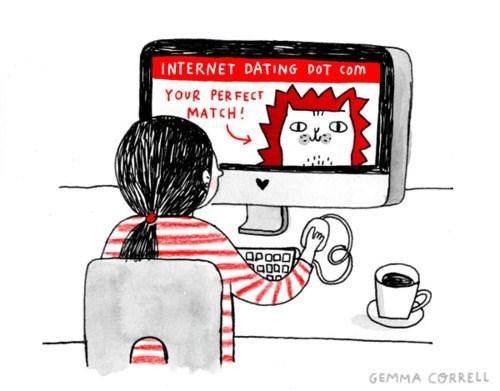 online dating, cats, match, true love