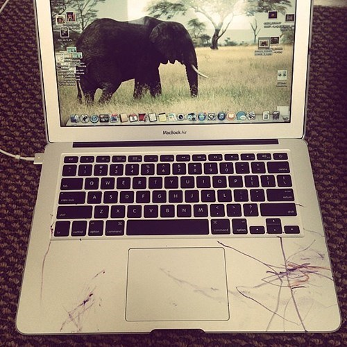 children, coloring, messy, ruined, macbook