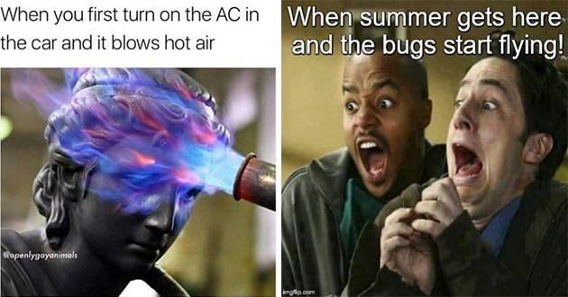 memes about summer