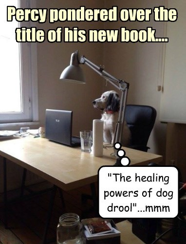 "Percy pondered over the title of his new book.... ""The healing powers of dog drool""...mmm"