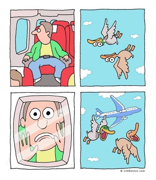 funny-web-comics-birds-play-a-great-prank-on-a-plane-passenger