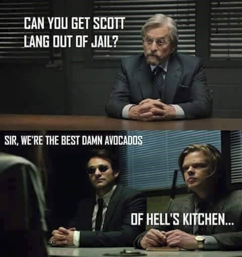superheroes-ant-man-marvel-daredevil-crossover-meme