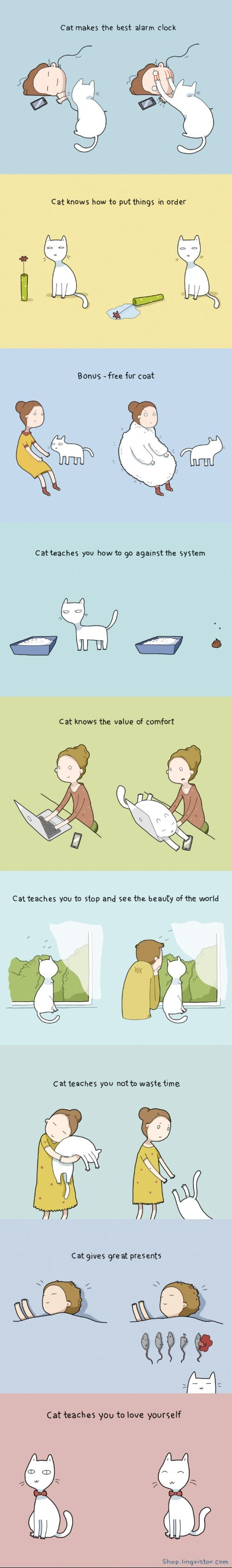 funny-web-comics-10-benefits-of-having-a-cat