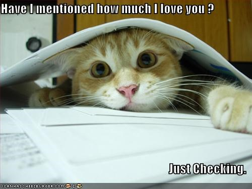 Have I Mentioned How Much I Love You Just Checking Cheezburger Funny Memes Funny Pictures