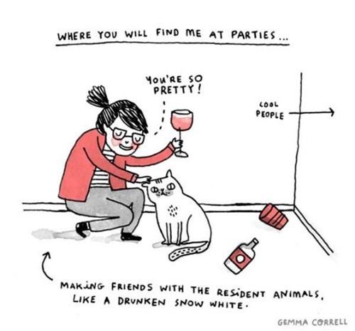 party, cat, wine, love