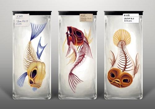 pokemon memes diaphonized-fish-pokemon