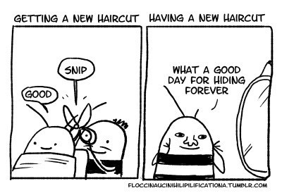 funny-web-comics-getting-a-new-haircut