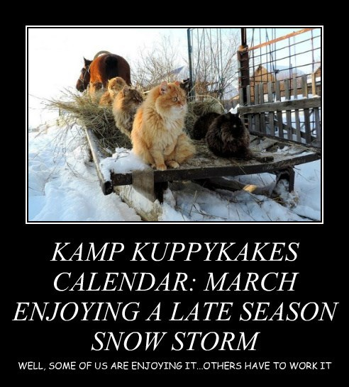 KAMP KUPPYKAKES CALENDAR: MARCH ENJOYING A LATE SEASON SNOW STORM