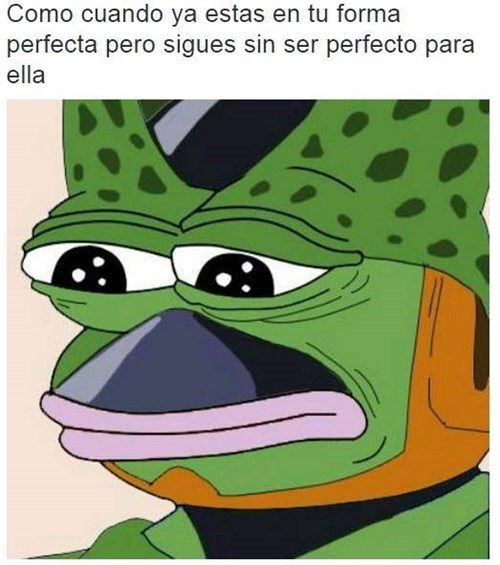 no eres perfecto